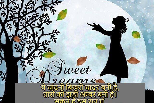 Good-night-shayari-image-hindi-gud-nyt-shayri