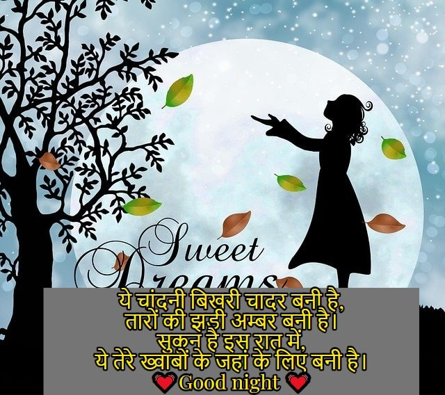 Good night shayari image hindi, gud nyt shayri