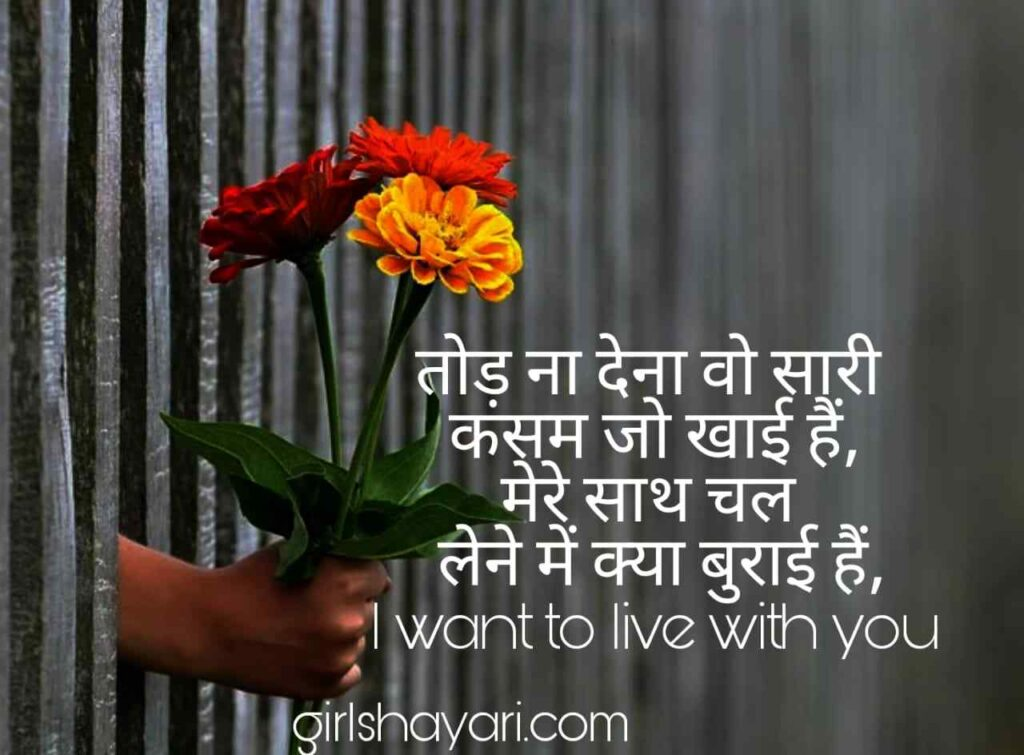 propose shayari in hindi english